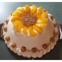 Pfirsich-Schmand-Torte ab 29,50 €